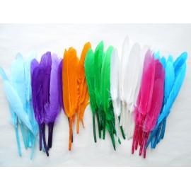 Lot de 20 plumes oie indien couleur au choix